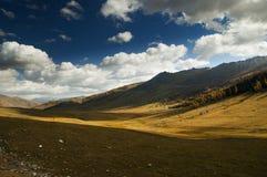 Prairie in de herfst Stock Foto's
