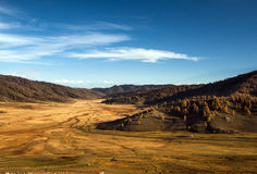 Prairie in de herfst Stock Afbeelding