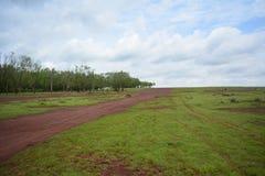 Prairie de Hesserghatta Photographie stock