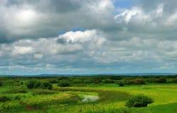 Prairie de Hulunbuir Photos libres de droits