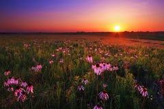 Prairie de Kon-Tah de ` de Wah au coucher du soleil Image libre de droits