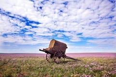 Prairie de l'Inner Mongolia images stock