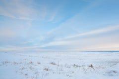 Prairie de Milou Image libre de droits