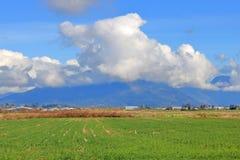 Prairie de vallée et cumulus images libres de droits