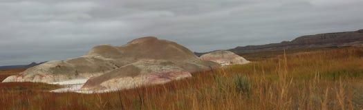 Prairie de Zuid- van Dakota met het panorama van asheuvels Stock Foto