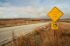 Prairie Dog Sign By Road Royalty Free Stock Photos