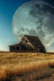Prairie Dreamin! Stock Foto's