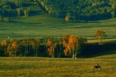 Prairie dusk Royalty Free Stock Images