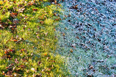 Prairie en hiver image stock