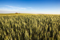 Prairie Farmland Stock Photo