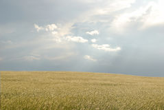 Prairie feild. Dramatic sky and clouds over a prairie Royalty Free Stock Image