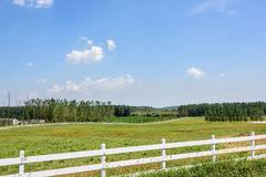 The prairie and fence Stock Photo