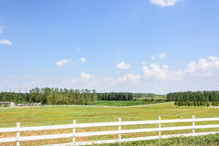 The prairie and fence Royalty Free Stock Photos