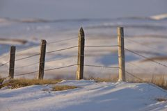 Prairie Fence in Winter Royalty Free Stock Photo
