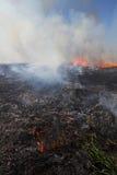 Prairie Fire. Prescribed prairie burn on the Great Plains in Nebraska stock photo