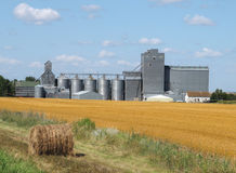 Prairie grain elevator and bin complex Royalty Free Stock Photo