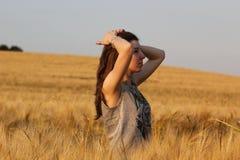 Prairie, Grass Family, Grassland, Field Stock Images