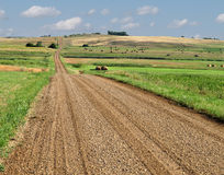 Prairie gravel road through fields.