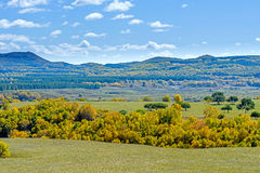 The prairie and hill Stock Images