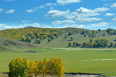 The prairie and hill Stock Photography