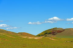 The prairie and hill Royalty Free Stock Photo
