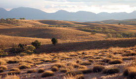 Prairie landscape Stock Photos