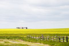 Free Prairie Landscape Royalty Free Stock Photos - 348468