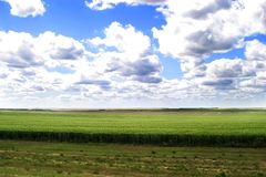 Prairie Landscape Stock Images