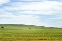 Prairie Landscape Stock Photo