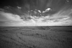Free Prairie Landscape Royalty Free Stock Photos - 5730828