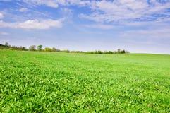 Prairie Landscape And Sky Stock Photos