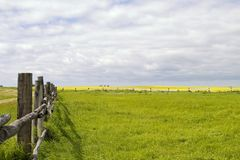 Prairie Landscape - Fence Line. Prairie landscape with old fence line Royalty Free Stock Photo