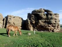 A prairie landscape painting. The rocks of the division and the pregnant horse form a prairie landscape. inner Mongolia grassland China stock images