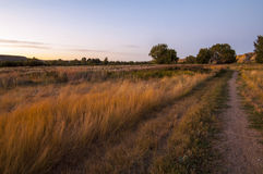 Prairie Landscape Royalty Free Stock Photography