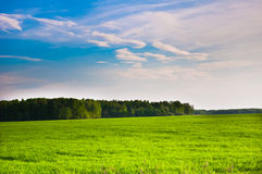 Prairie landscape and sky Royalty Free Stock Photography