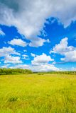 Prairie landscape and sky Royalty Free Stock Photo