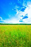 Prairie landscape and sky Stock Photo