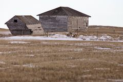 Prairie Landscape in winter Stock Photography