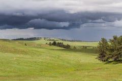 Prairie met onweerswolken Royalty-vrije Stock Foto's