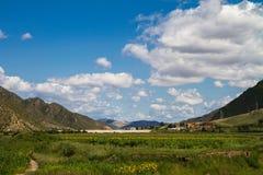 Prairie met zonnebloemen onder de witte wolken in Binnenmongolië royalty-vrije stock afbeelding