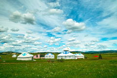 Prairie. Mongolia under the blue sky royalty free stock images