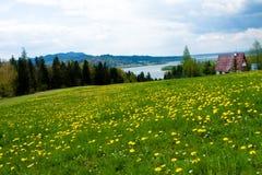Prairie, Niedzica, Pologne images libres de droits