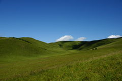 Prairie nuageuse Images libres de droits