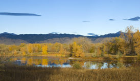 Prairie Pond in Bright Sunlight Stock Images
