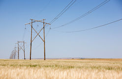 Prairie Power Line Stock Image
