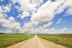 Prairie Road Landscape. Landscape of an Alberta prairie dirt road leading off into the distance Royalty Free Stock Photography