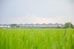 Prairie rond dorp Royalty-vrije Stock Foto