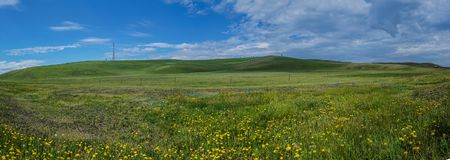 Prairie scenery. Beautiful grassland scenery under the clear sky Stock Images