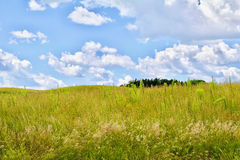 Prairie sky. Puffy clouds, rolling hills, green Minnesota praiirie royalty free stock photography