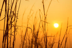 Prairie sky and sun in the evening. Stock Images